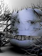 monstro photoprint 2010