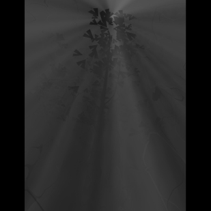 Paura 3 photoprint 2006