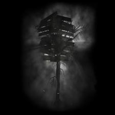 Untitled 1 photoprint 2009